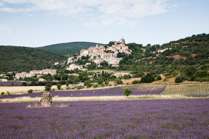 Lavendel bij Banon, Provence, Frankrijk | © Anne van Houwelingen | FotoTours.nl