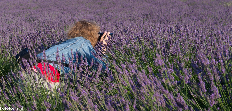 Foto deelnemer fotoreis Provence in lavendel, copyright Anne van Houwelingen